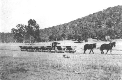 Horses pulling loaded carriages, Mt Knowles quarry - 19??